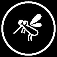 フィラリア予防・検査
