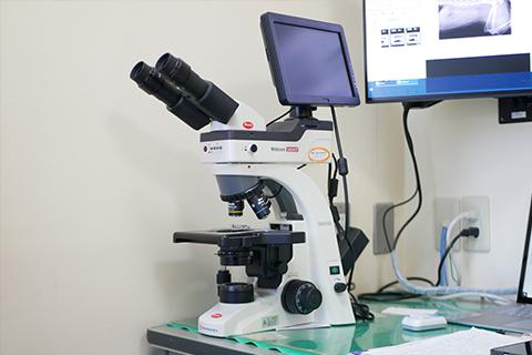 顕微鏡デジタルカメラシステム